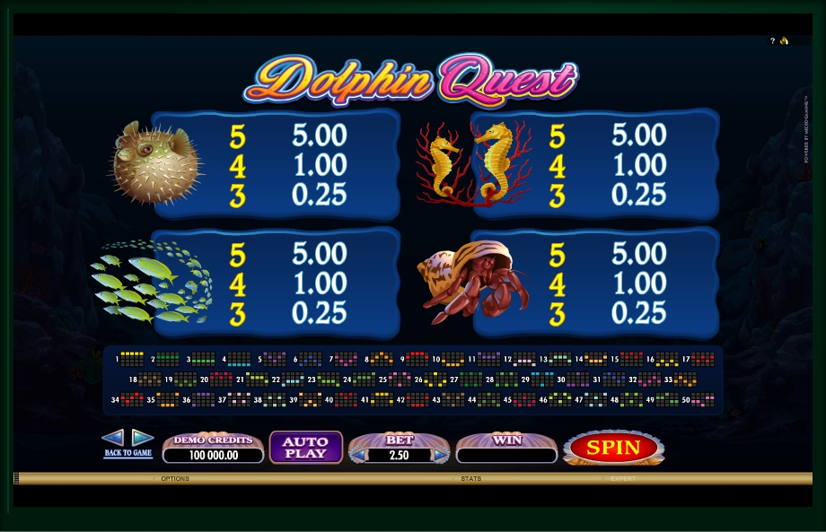4 скриншот автомата онлайн Dolphin Quest Slot