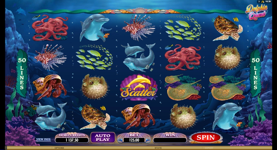 логотип автомата онлайн Dolphin Quest Slot