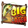 Символ Логотип игры  игра big catch